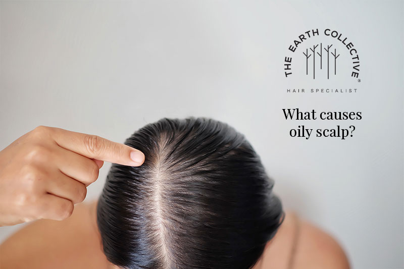 What causes oily scalp