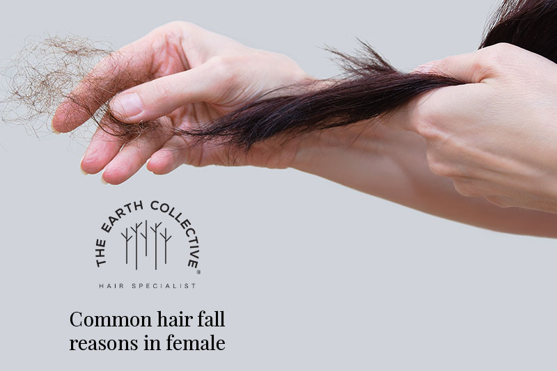 Common hair fall reasons in female